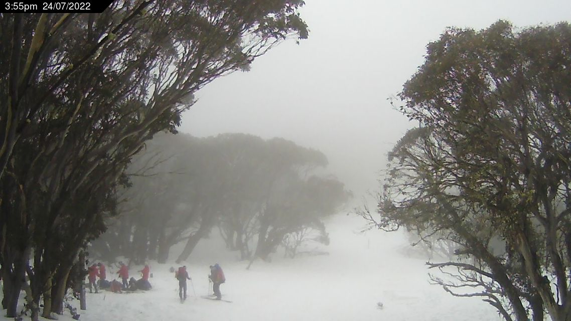Bluff Spur Snow Cam, Mt Stirling