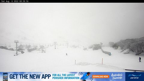 Blue Cow Snow Cam, Perisher