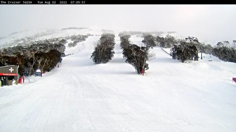Merritts Cruiser LIVE Snow Cam, Thredbo